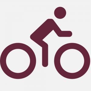 Chalet Piereni - Bike